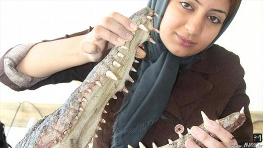 شجاع ترین دختر ایرانی