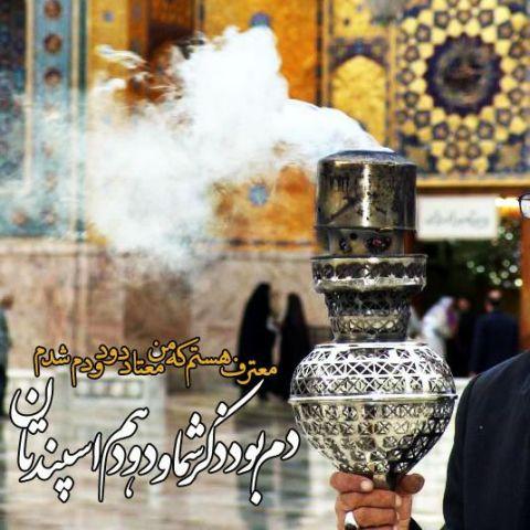نتیجه تصویری برای دلم هوای امام رضارو کرده