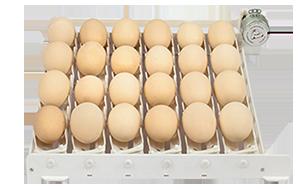 گرداننده تخم ماشین جوجه کشی 48 تایی