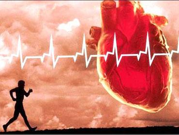 ورزش های مفید و مضر برای قلب را بشناسید , تناسب اندام