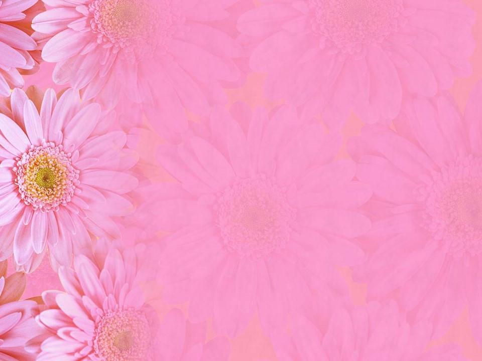 قالب بسیار زیبای گل 7
