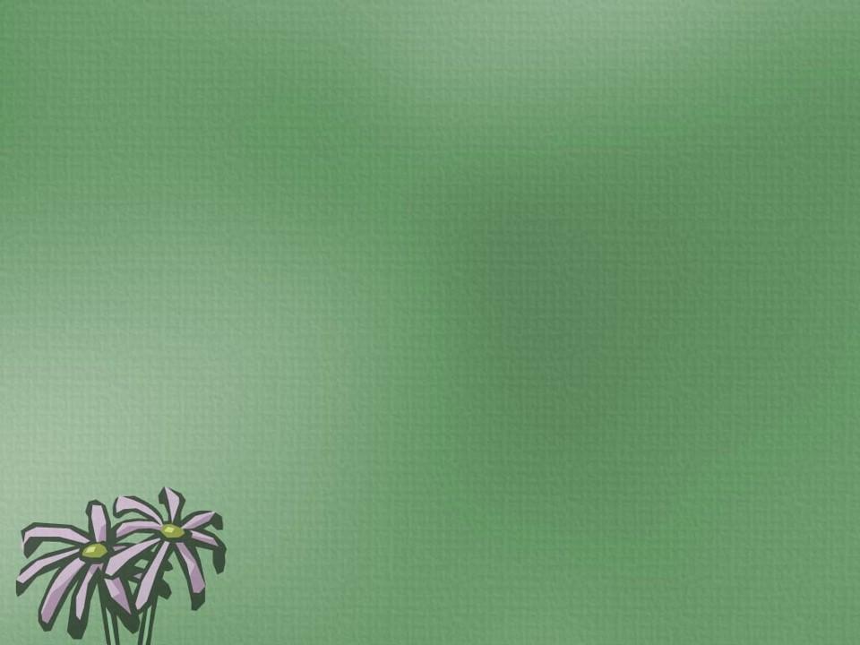 قالب پاورپوینت گل زیبا 10