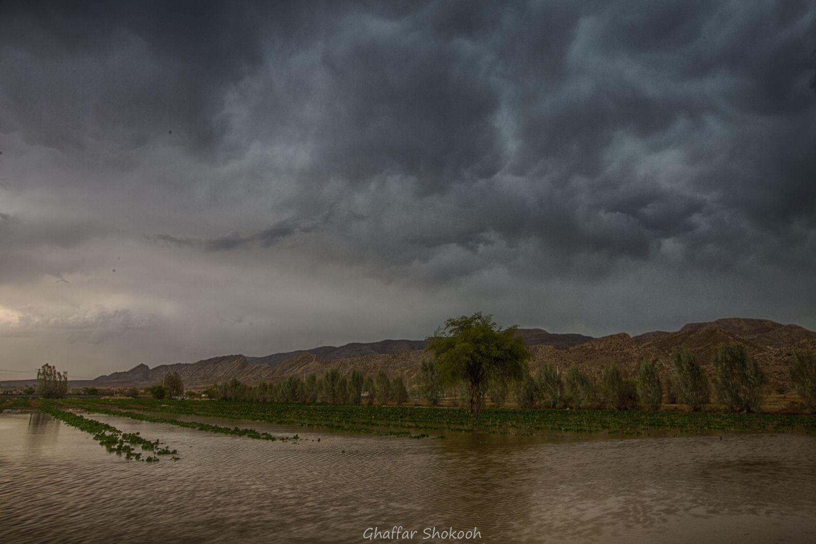 [عکس: rain_evaz_17shahrivar_4_.jpg]