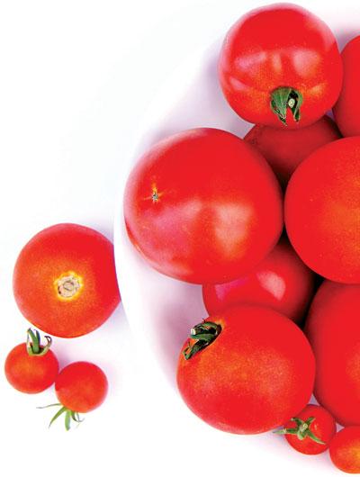 عالی نیوز/گوجه فرنگی