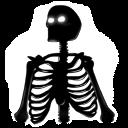 skeleton_1.png