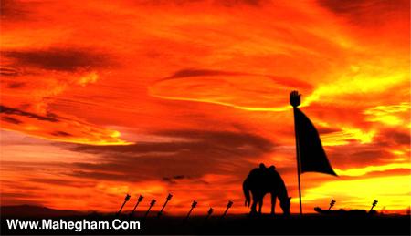 شیخی-عباسیان-شبهای هشتم نهم ودهم ویازدهم محرم95-محفل دیوانگان حضرت اباالفضل(ع)