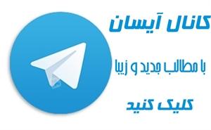 http://s3.picofile.com/file/8214346184/aysan_3.jpg