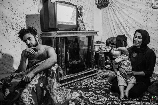 عکاس ایرانی برنده جایزه بهترین عکاس ,برندگان عکاس حیات وحش در 2015