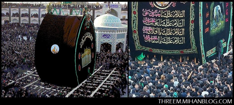 بزرگترین نخل ایران