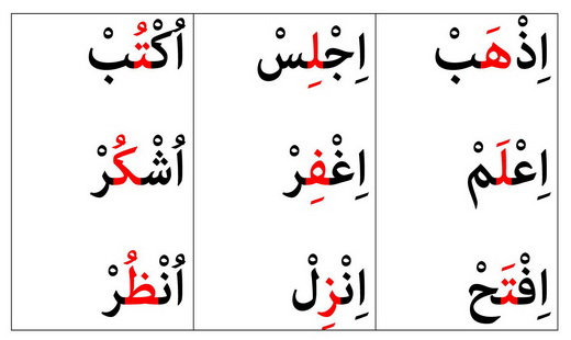 پیام نسیم مرجع بررسی کتب عربی جدید