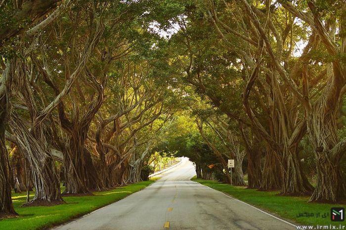 خیابان های زیبا و دیدنی در دنیا