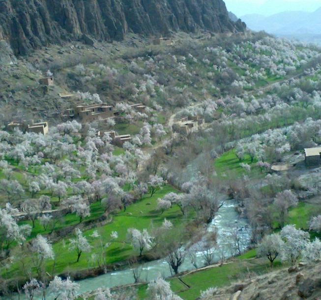 تصاویر بسیار جذاب ودیدنی از منطقه ی برگر ولسوالی شهرستان- ولایت دایکندی