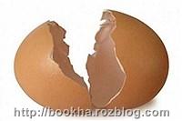 با پوست تخم مرغ چیکار میشه کرد