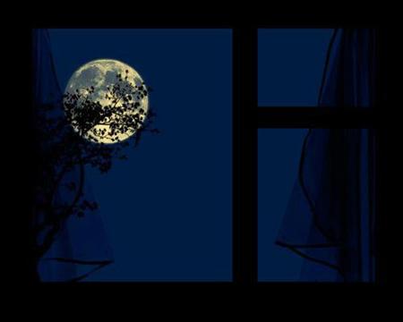 :: ماه هم از پنجره هر شب به تو زُل می زند ::