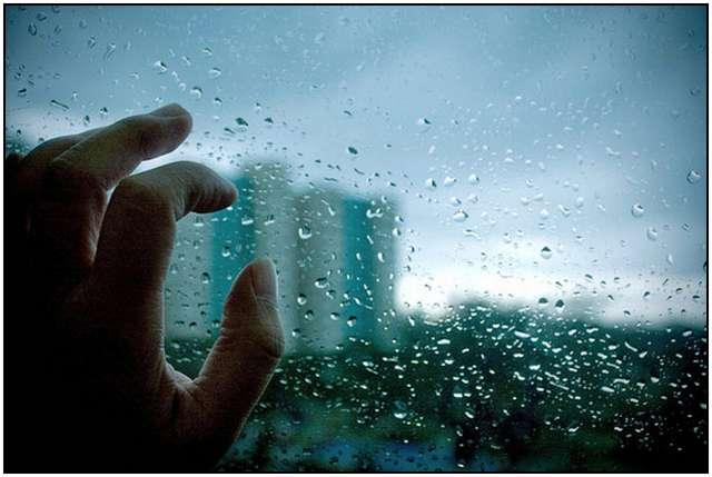 :: دست کم در شهرتان باران خوبی می شود ::