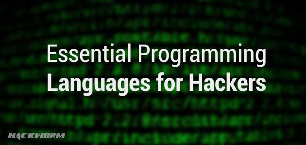 بهترین زبان های برنامه نویسی برای هکرها