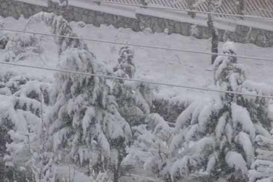 باران و برف در راه است , اجتماعی
