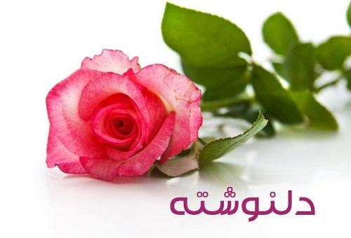 Image result for فرق عمل سالم و عمل به ظاهر نیک