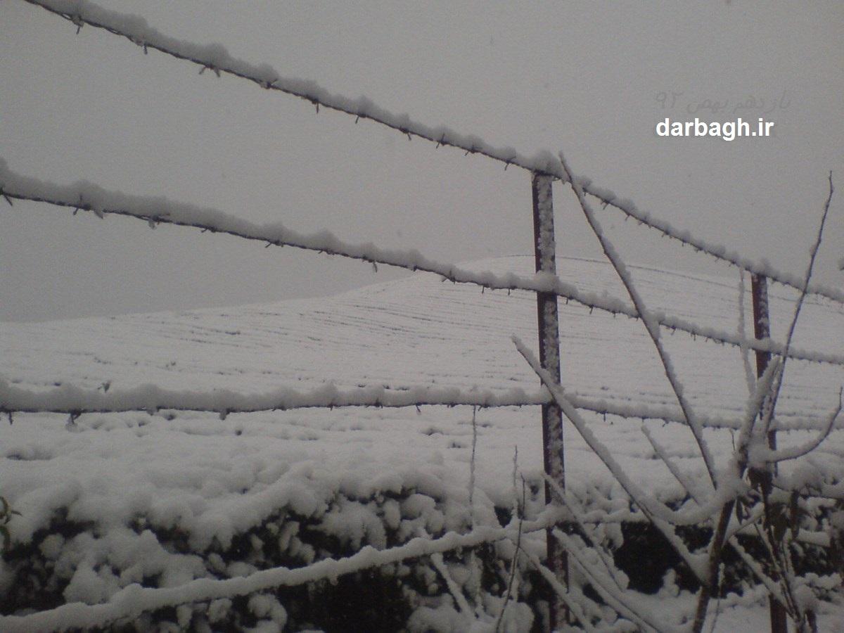 barf darbagh ir 11 11 2  اولین برف زمستانی 92 دارباغ بخش اول