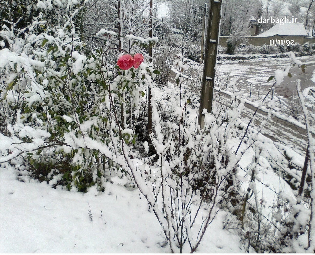 barf darbagh ir 11 11 6  اولین برف زمستانی 92 دارباغ بخش اول
