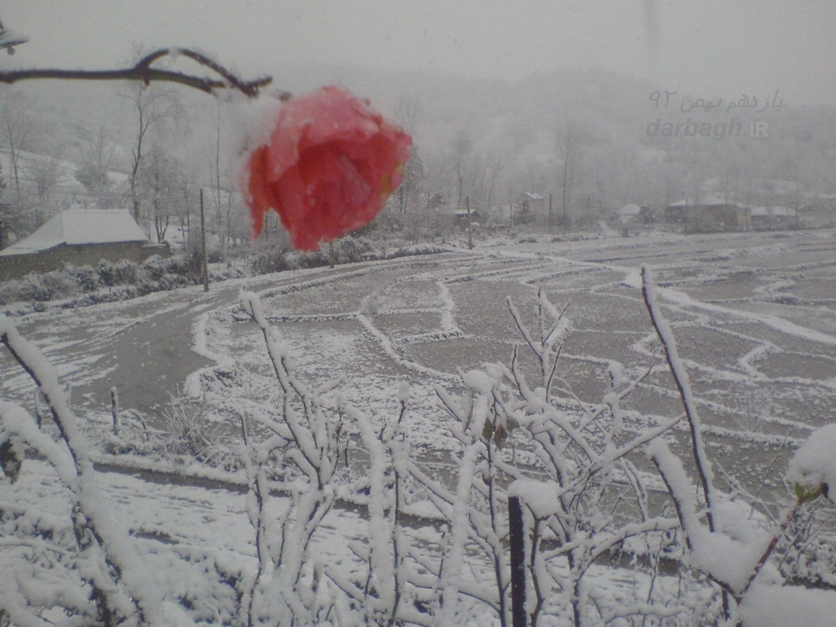 barf darbagh ir 11 11 اولین برف زمستانی 92 دارباغ بخش اول
