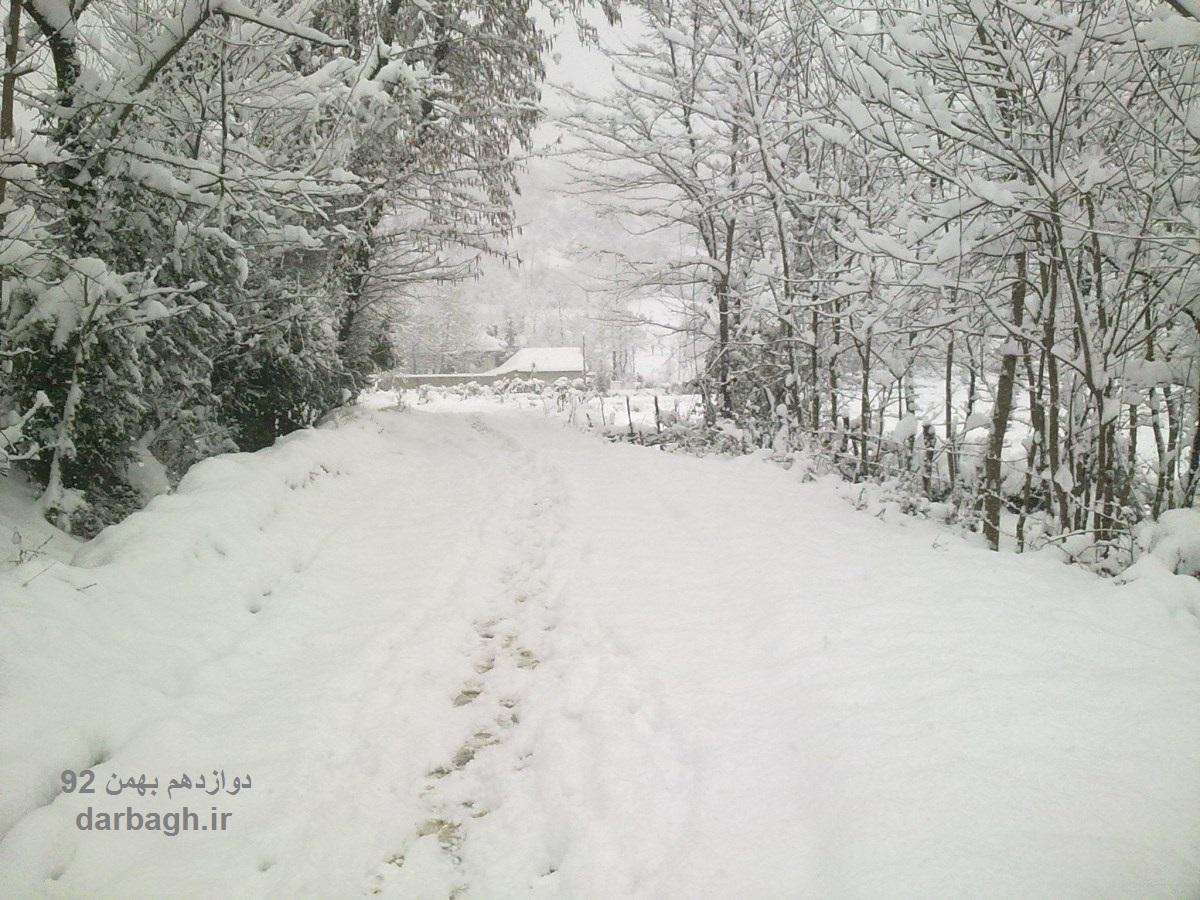 barf darbagh ir 12 18  برف دارباغ 12 بهمن 92