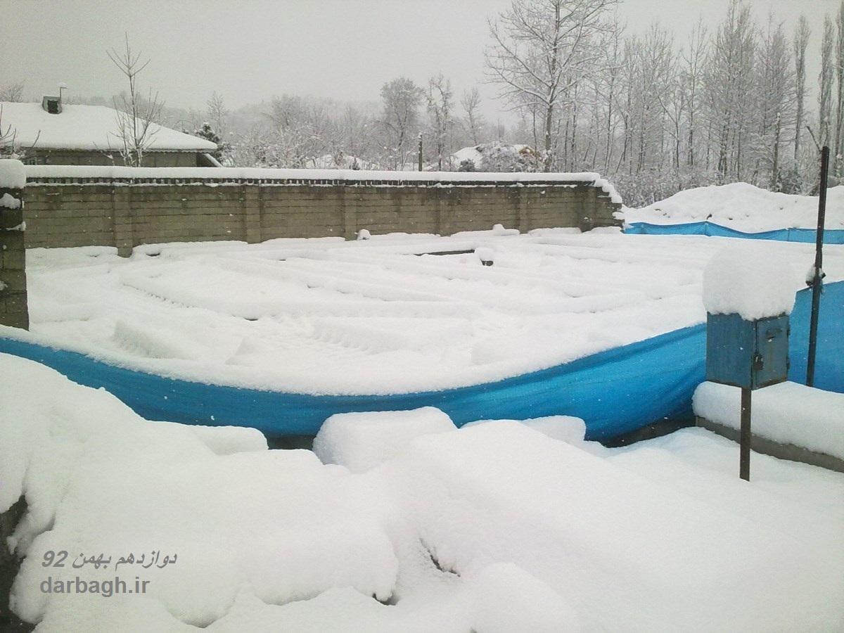 barf darbagh ir 12 24  برف دارباغ 12 بهمن 92