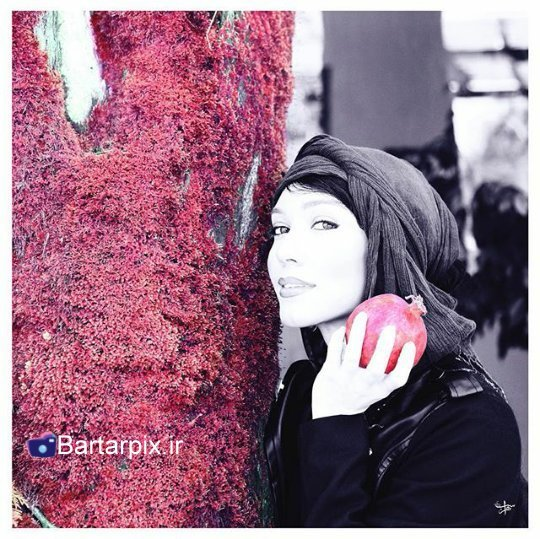 http://s3.picofile.com/file/8229242276/www_bartarpix_ir_sab_yalda_94_23_.jpg