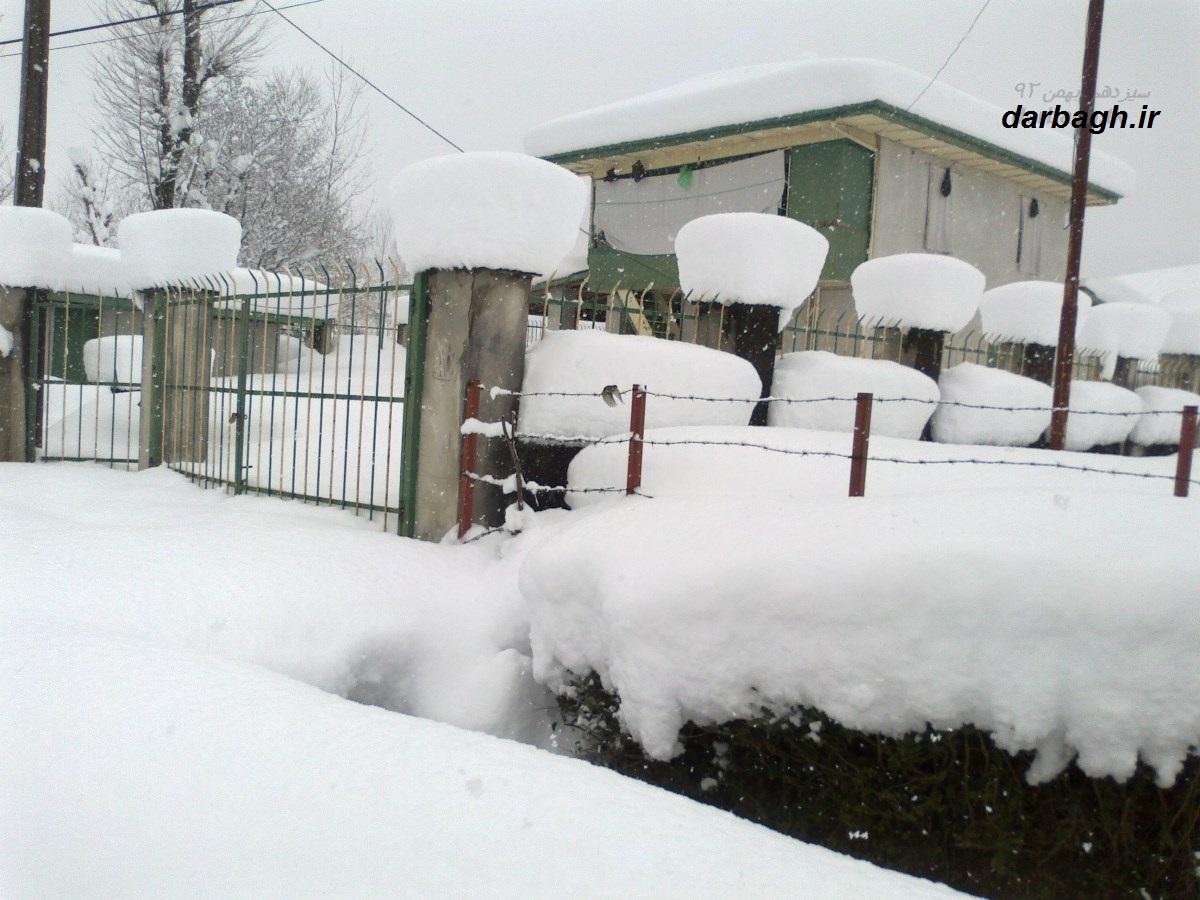 barf darbagh ir13 11 92 2  عکسهای برف دارباغ 13 بهمن 92