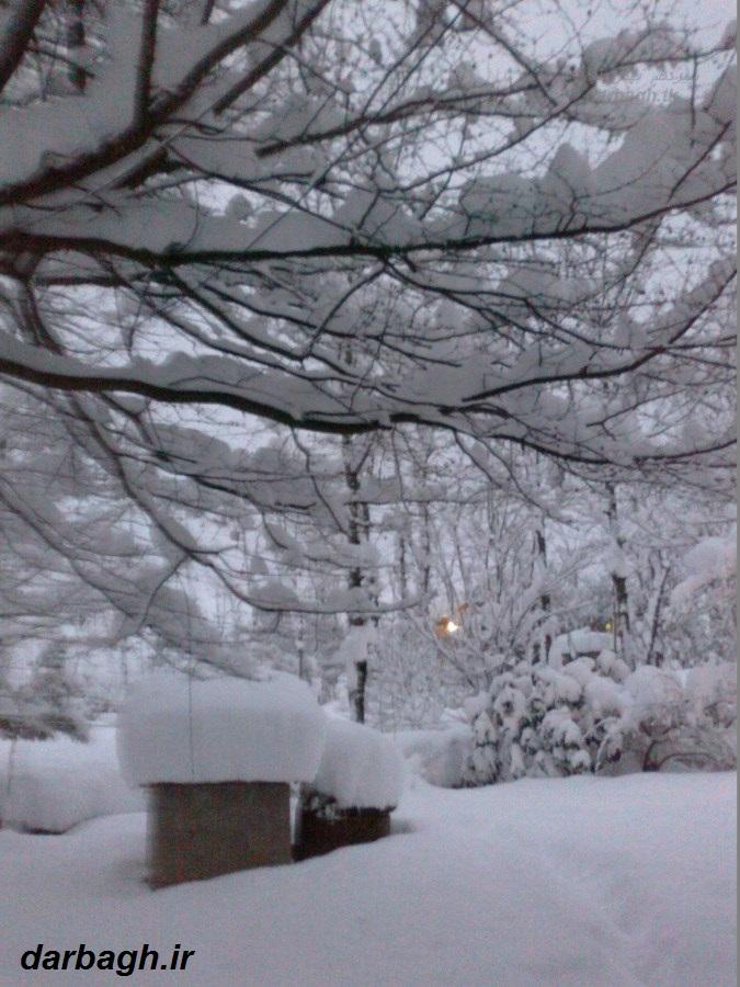 barf darbagh ir13 11 92 10  عکسهای برف دارباغ 13 بهمن 92