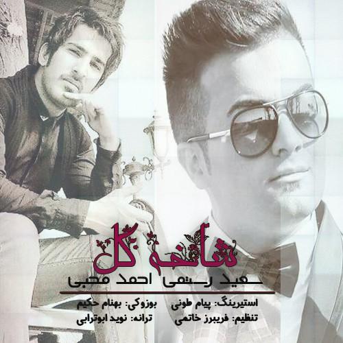 دانلود آهنگ جدید سعید رستمی و احمد محبی به نام شاخه گل