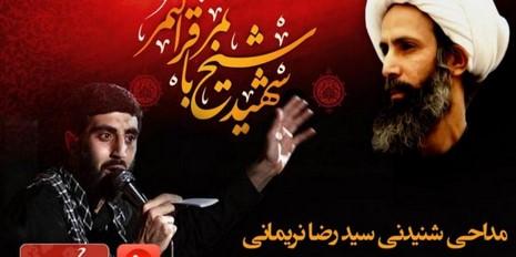 مداحی شنیدنی سید رضا نریمانی برای شیخ نمر-صوتی
