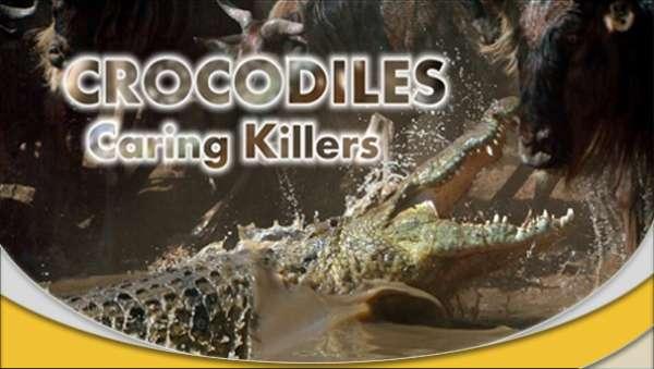 دانلود مستند کروکودیل ها قاتلین مراقب