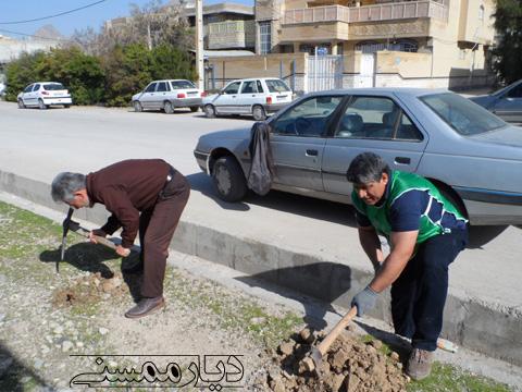 مراسم روز درختکاری توسط حامیان طبیعت زاگرس و آموزش و پرورش ممسنی