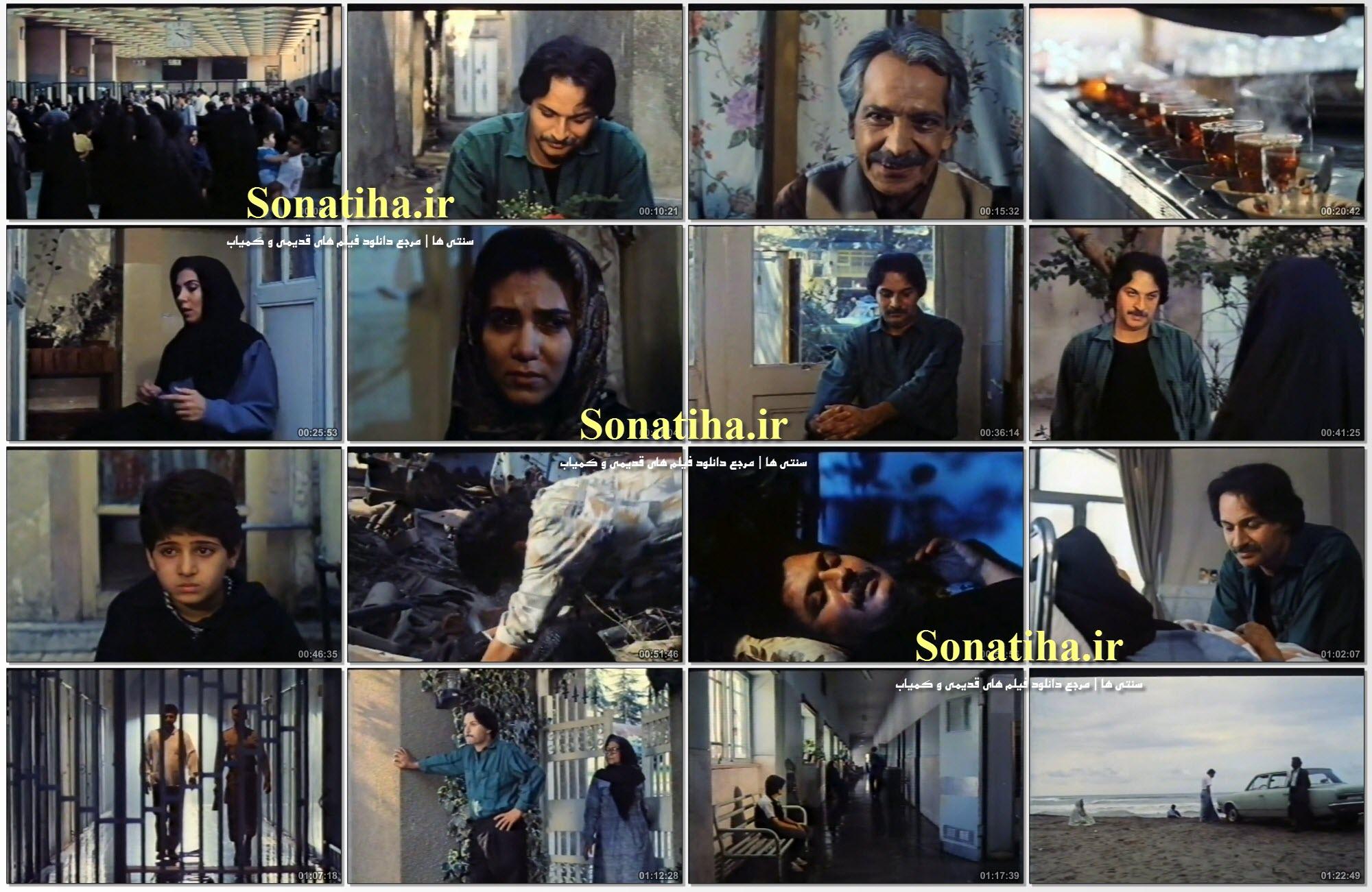 تصاویری از فیلم شقایق