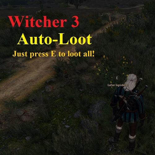 ماد لوت اتوماتیک در Witcher 3