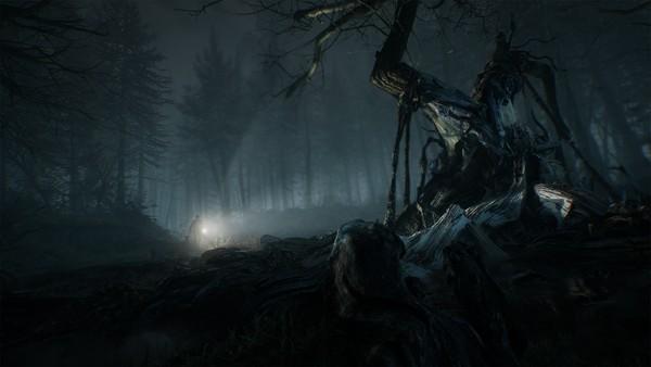 تماشا کنید: نمایش جدید Blair Witch جنگلهای زیبا و در عین حال مخوف بازی را نشان میدهد