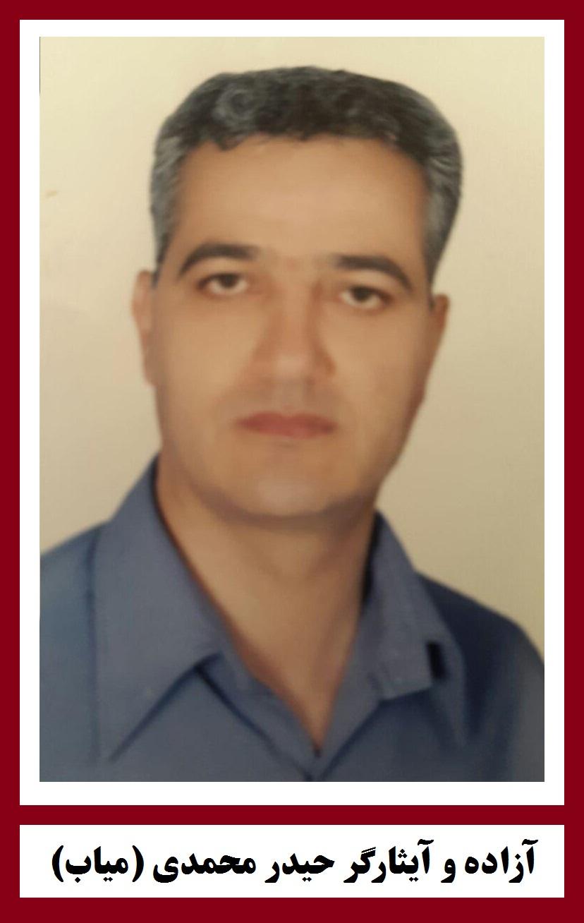 حیدر محمدی